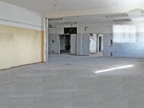 Сдам производственное помещение 515 кв.м, м. Площадь Ленина - Фото 5