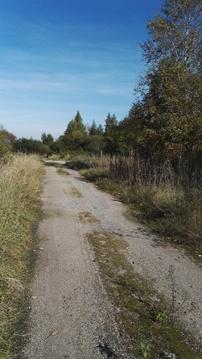 Продажа участка, Новая Уситва, Палкинский район - Фото 3