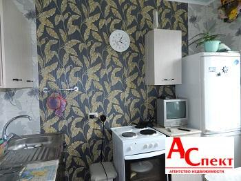 1-к квартира Екатерины Зеленко - Фото 4