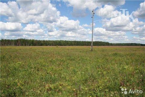 Продам земельный участок 12,5 соток (ИЖС), д.Борщёво - Фото 1