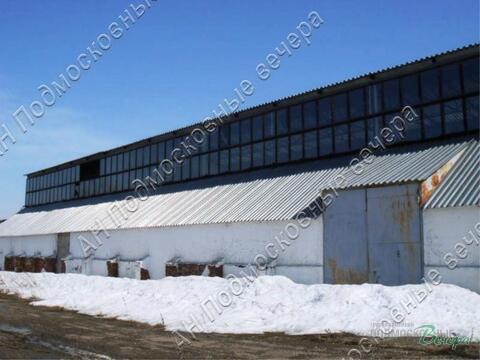 Новорижское ш. 110 км от МКАД, Волоколамск, Участок 203.4 сот. - Фото 1