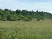 Участок 42 сотки до р. Волга 180 метров третья линия, в д. Новое село. - Фото 1