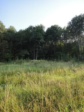 Продается земельный участок площадью 6 соток - Фото 5