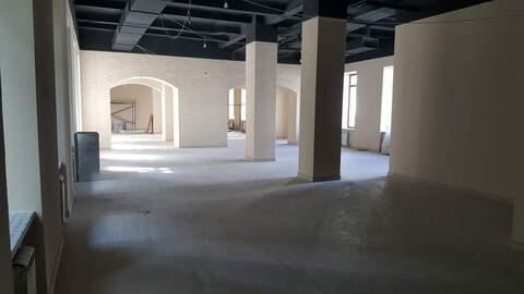 Аренда торгового помещения 467.5 м2 - Фото 2