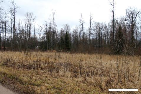 Продажа земельного участка в ДНП Ковчег - Фото 3