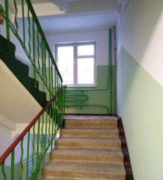 2-х комнатная квартира Шибанкова дом 55 - Фото 3