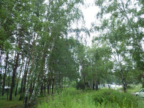 Продажа участка, Приобский, Новосибирский район - Фото 3