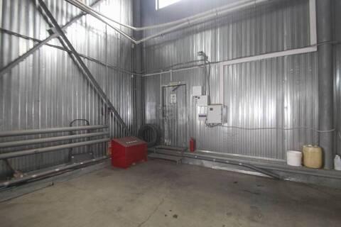Сдам склад, Аренда склада в Тюмени, ID объекта - 900554667 - Фото 1