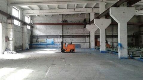 Сдам складское помещение 1390 кв.м, м. Автово - Фото 1