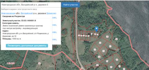 Продажа земельного участка 1,2 га в Валдайском районе, д. Борисово - Фото 2
