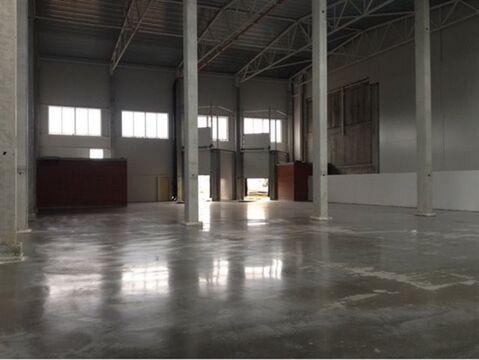 Сдам складское помещение 1900 кв.м, м. Девяткино - Фото 1