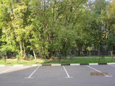 Офис 618.5 кв.м м.Бульвар Рокоссовского, - Фото 1