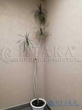 Продажа квартиры, м. Василеостровская, 24-я В.О. линия - Фото 5
