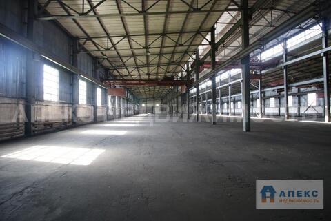 Аренда помещения пл. 4700 м2 под склад, производство, , офис и склад, . - Фото 4