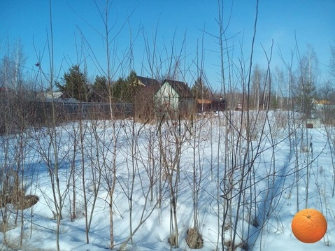 Продается участок, Горьковское шоссе, 40 км от МКАД - Фото 4