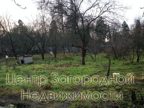 Участок, Щелковское ш, Ярославское ш, 19 км от МКАД, Загорянский п. . - Фото 5