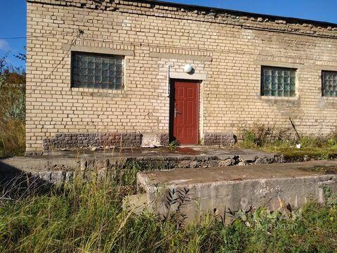 Производственное помещение в Псковская область, Псков ул. Евлентьева, . - Фото 2