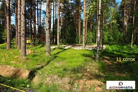 Уникальный участок 11 соток в п.Кузьмоловский - Фото 4