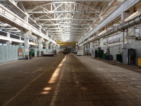 Производственное помещение в аренду - Фото 4