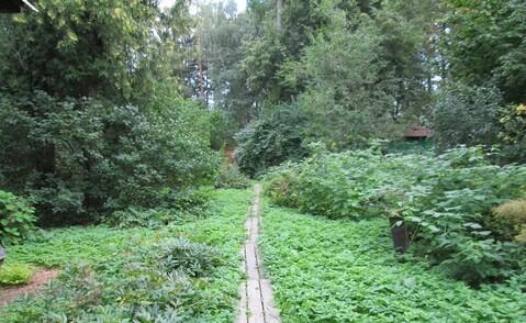 29 соток хвойного леса для постоянного проживания . Закрытый поселок в - Фото 1