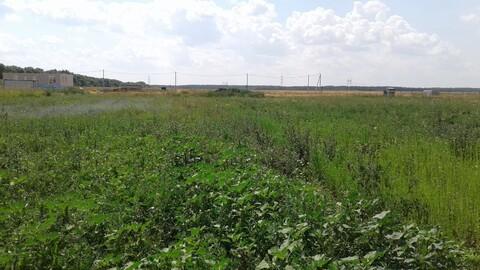 Продается земельный участок в с. Троицкое - Фото 1