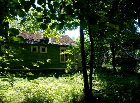 """ДПК """"Назарьево"""" лесной участок 35 соток - Фото 4"""