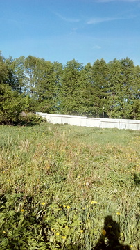 Продам участок 8 соток ИЖС д. Чапаевка - Фото 1