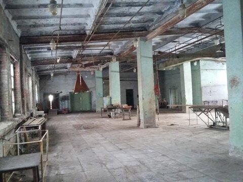 Мебельная фабрика.продажа.цеха, станки, сушильные камеры 4 Га - Фото 5