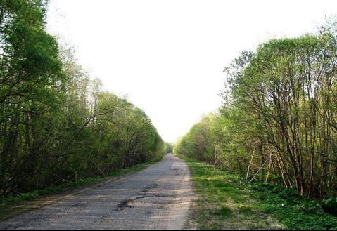 Большой и дешевый участок земли в жилой деревне Конаковского района - Фото 5