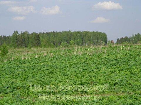 Участок, Новорижское ш, 98 км от МКАД, Нововолково д. (Рузский р-н). . - Фото 2