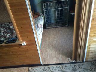 Аренда квартиры посуточно, Петрозаводск, Ул. Дзержинского - Фото 1