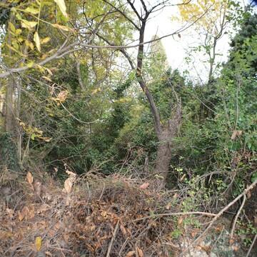 Земельный участок 6 соток в Ялте - Фото 4