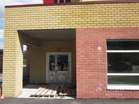 Аренда торгового помещения, Йошкар-Ола, Ул. Димитрова - Фото 2