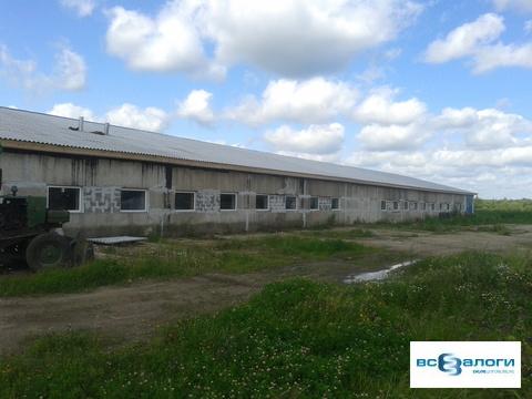 Продажа производственного помещения, Нерльское, Калязинский район - Фото 3