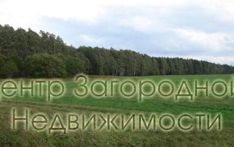 Участок, Симферопольское ш, Варшавское ш, 45 км от МКАД, Большое . - Фото 2