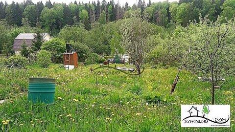 Продается дом 30кв.м. на участке 7 соток в д.Толстяково - Фото 4