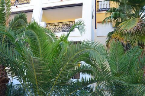 Продажа квартиры, Торревьеха, Аликанте, Купить квартиру Торревьеха, Испания по недорогой цене, ID объекта - 313151830 - Фото 1