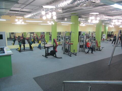 Современный прибыльный фитнес-клуб