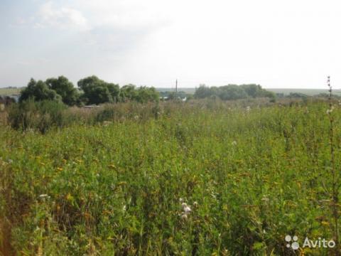 Квадратный участок вблизи Пронского водохранилища - Фото 3