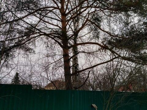 Участок, Можайское ш, 5 км от МКАД, Одинцово, в городе. Участок 8,0 . - Фото 3