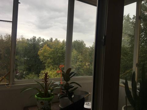 Нижний Новгород, Нижний Новгород, Ленина проспект, д.85, 2-комнатная . - Фото 2