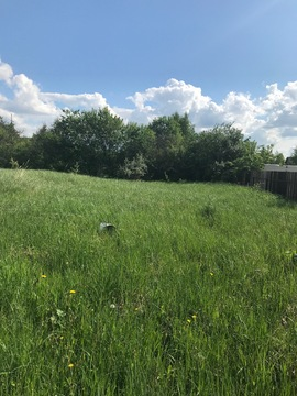 Участок в д. Павловское, Новорижское шоссе, 30 км - Фото 4