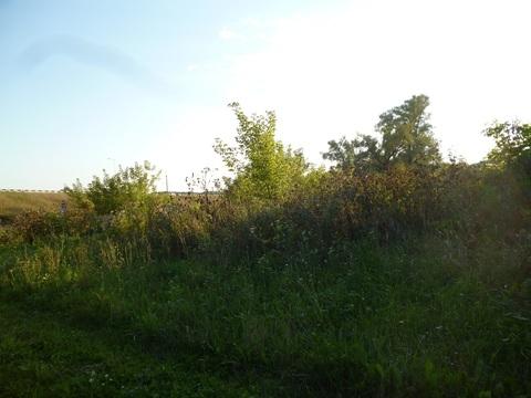 Земельный участок - Фото 5