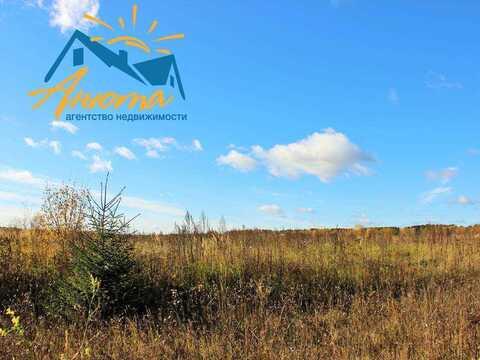 Продается земельный участок в деревне Митинка - Фото 4