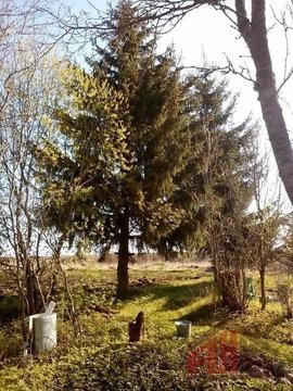 Продажа дома, Неклочь, Псковский район - Фото 3