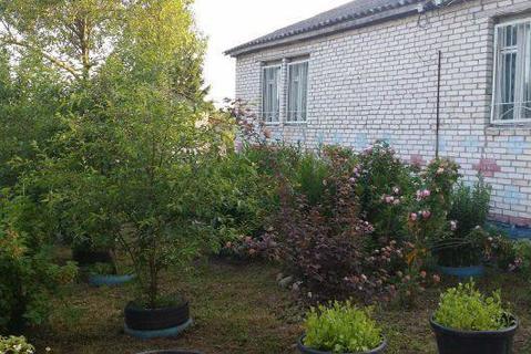 Продается дом в деревне Виленка - Фото 5