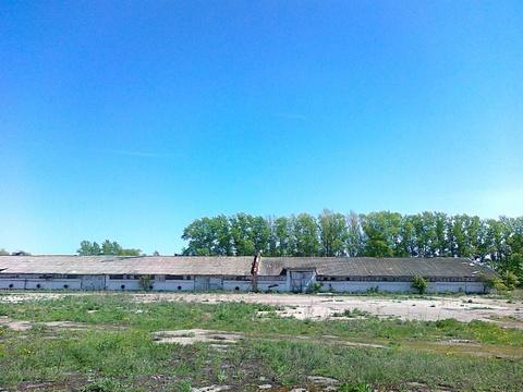 Продажа зернохранилища 1493 м2 на участке 1,2 га - Фото 2