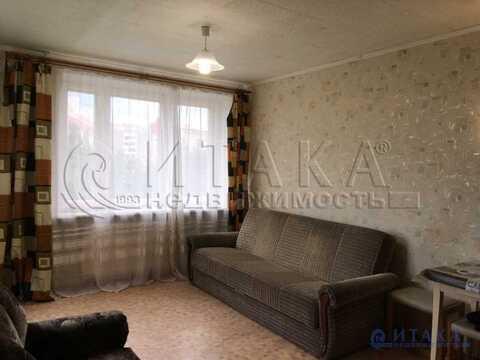 Продажа комнаты, м. Проспект Ветеранов, Ул. Стойкости - Фото 1