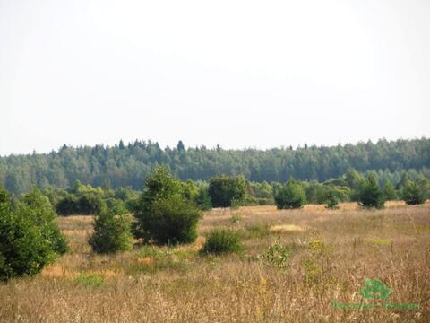 3,9 Га под лпх в д.Тельвяково - 95 км Щёлковское шоссе - Фото 3