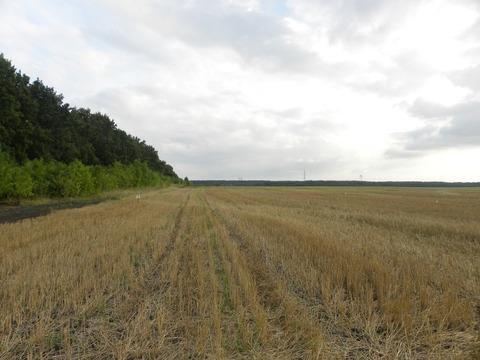Продажа участка, Липецк, С.Троицкое - Фото 2